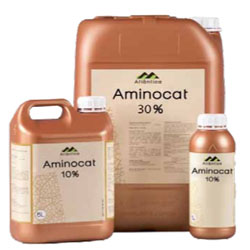 aminokat