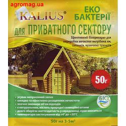 kalius50
