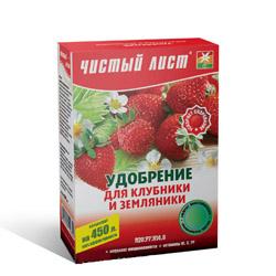 klubnika_zemlyanika_1