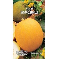 KT-1234-11-dynia kolchoznica_80x150