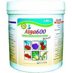 alga-600