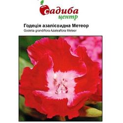 godetsiya-meteor