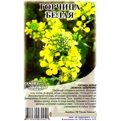 gorchitsa-belaya