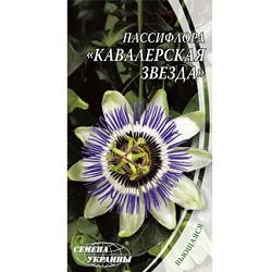 passiflora-kavalerskaya-zvezda