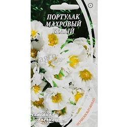 mahrovyj-belyj