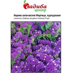 Цветы_Pan Amerikan_(175×133-35z84)