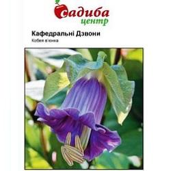 kobeya-kafedralni-dzvoni