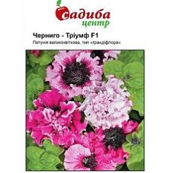 Цветы_Черни_(175x133-25z84)