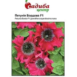 Цветы_Черни_(175x133-35z84)