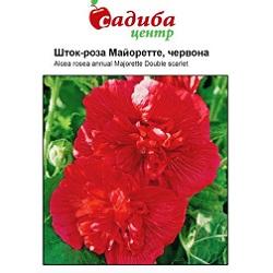 shtok-roza-majorette-chervona-1