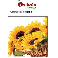 sonyashnik-topolino_-175x133-35z84
